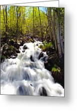 Waterfall Through The Aspens Greeting Card