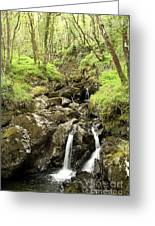 Waterfall Through Woodland Greeting Card