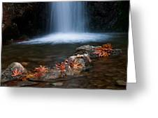 Waterfall And Leaves In Autumn Greeting Card