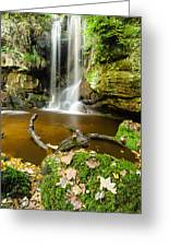 Waterfall With Autumn Leaves Greeting Card