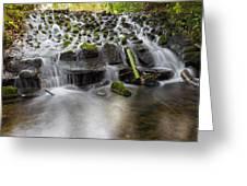 Waterfalls In Marlay Park Greeting Card
