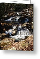 Forever Flowing Greeting Card