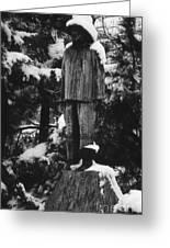Waterman's Statue Greeting Card