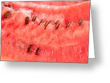 Watermelon Background Greeting Card by Luis Alvarenga
