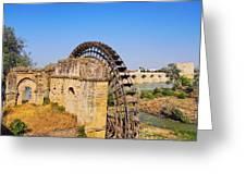 Watermill In Cordoba Greeting Card