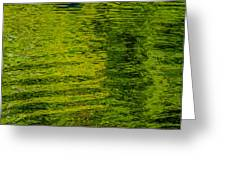 Water's Green Greeting Card by Roxy Hurtubise