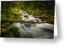 Waters Of Larch Mountain Greeting Card by Stuart Deacon