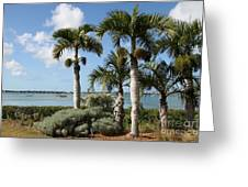 Waterview Greeting Card
