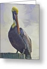 Waterway Pelican Greeting Card by Deborah Benoit