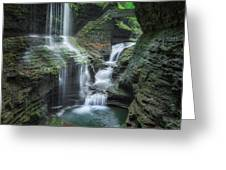 Watkins Glen Greeting Card by Bill Wakeley