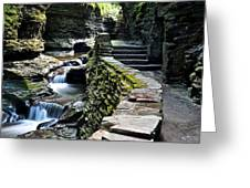 Watkins Glen Exiting The Trail Greeting Card