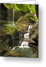 Watkins Glen Falls Greeting Card by Anthony Sacco