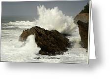 Wave At Shore Acres Greeting Card