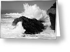 Wave At Shore Acres Bw Greeting Card