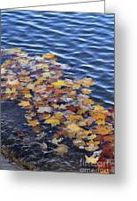 Wave Of Fall Leaves Greeting Card