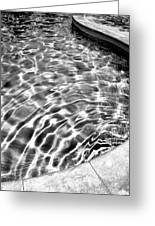 By The Pool Palm Springs Greeting Card