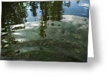 Wavering Reflections Greeting Card