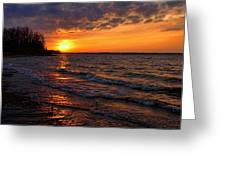 Waves And Shiny Shore Greeting Card