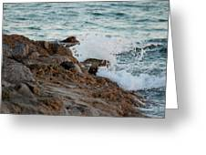 Waves Hitting The Rocks Greeting Card