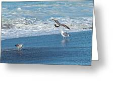 Waves In The Pacific Ocean, Point Reyes Greeting Card