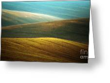 Waves Of Colours Greeting Card
