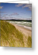 Waves Of Water And Grass Greeting Card