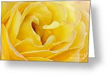 Waves Of Yellow Greeting Card by Sabrina L Ryan