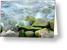 Waves On Mossy Rocks Greeting Card
