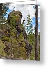 Waving Rock At Yellowstone Greeting Card