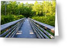 Way To Wilderness Greeting Card