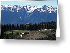 Way Up High - Hurricane Ridge - Washington Greeting Card