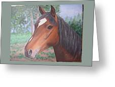 Wayne's Horse Greeting Card