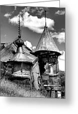 We Are Not In Kansas Anymore II Bw Greeting Card