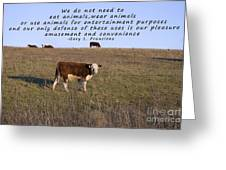 We Do Not Need To Eat Animals Greeting Card