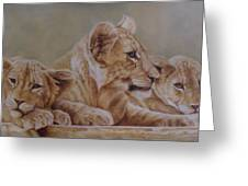 We Three Will Be Kings... Greeting Card