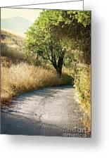 We Will Walk This Path Together Greeting Card