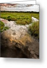 Weather Reflected Greeting Card