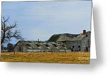 Weathered Barns Greeting Card by Alys Caviness-Gober