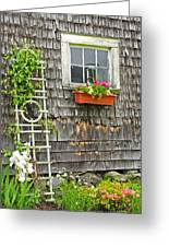 Weathered Maine Seacoast Barn Greeting Card by Thomas Schoeller