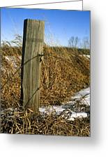 Weathered Old Fence Post Greeting Card