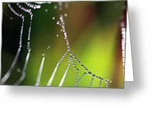 Web 20131022-34 Greeting Card