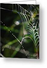 Web In The Morning Greeting Card