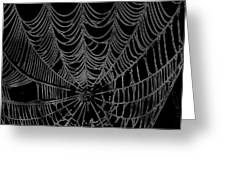 Web We Weave Greeting Card