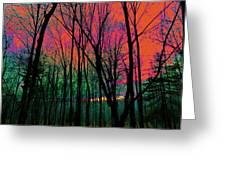 Webbs Woods Sunset Greeting Card