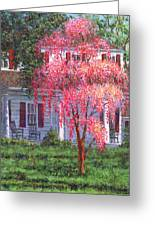 Weeping Cherry By The Veranda Greeting Card
