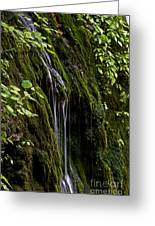 Weeping Rock Greeting Card