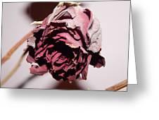 Weeping Rose Greeting Card