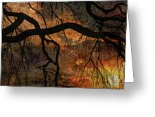 Weeping Willow Sunset Greeting Card