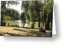 Weeping Willows In Central Park  Greeting Card