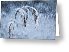 Weight Of Winter Greeting Card